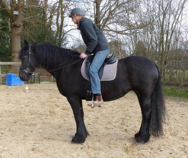 Centered Riding: Kom uit de stoelzit